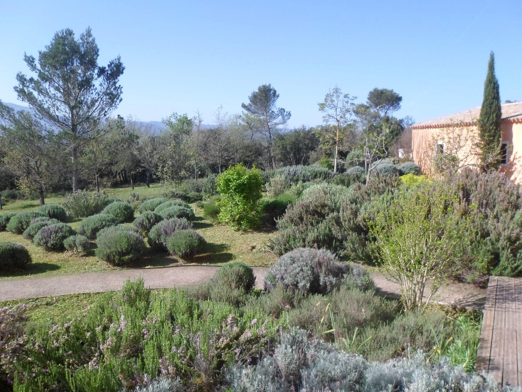 entretien d 39 un jardin proven al dans le var jardinier paysagiste saint maximin var ja d e. Black Bedroom Furniture Sets. Home Design Ideas