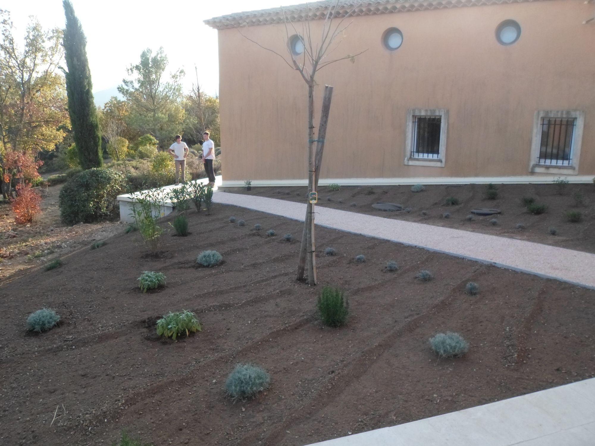 cr ation d 39 un jardin m diterran en nans les pins dans le var jardinier paysagiste saint. Black Bedroom Furniture Sets. Home Design Ideas