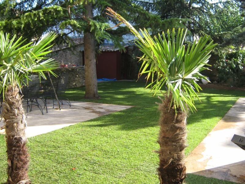 Plaquage de pelouse dans une maison de village saint for Piscine saint maximin la sainte baume