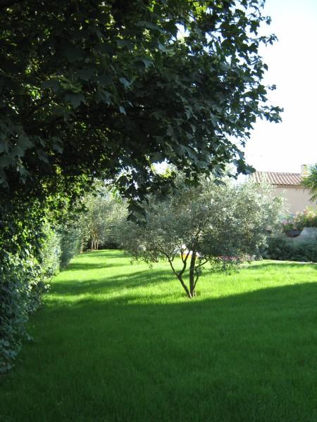 pelouse m diterran enne sem e saint maximin jardinier paysagiste saint maximin var ja d e. Black Bedroom Furniture Sets. Home Design Ideas