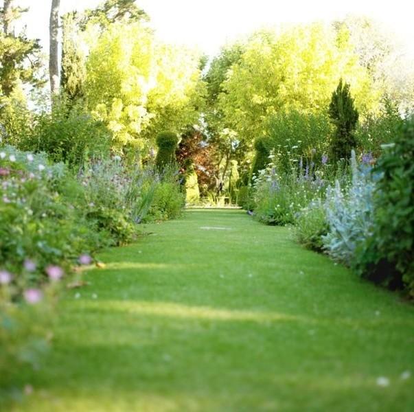 Entretien de votre jardin saint maximin nans les pins for Contrat entretien jardin