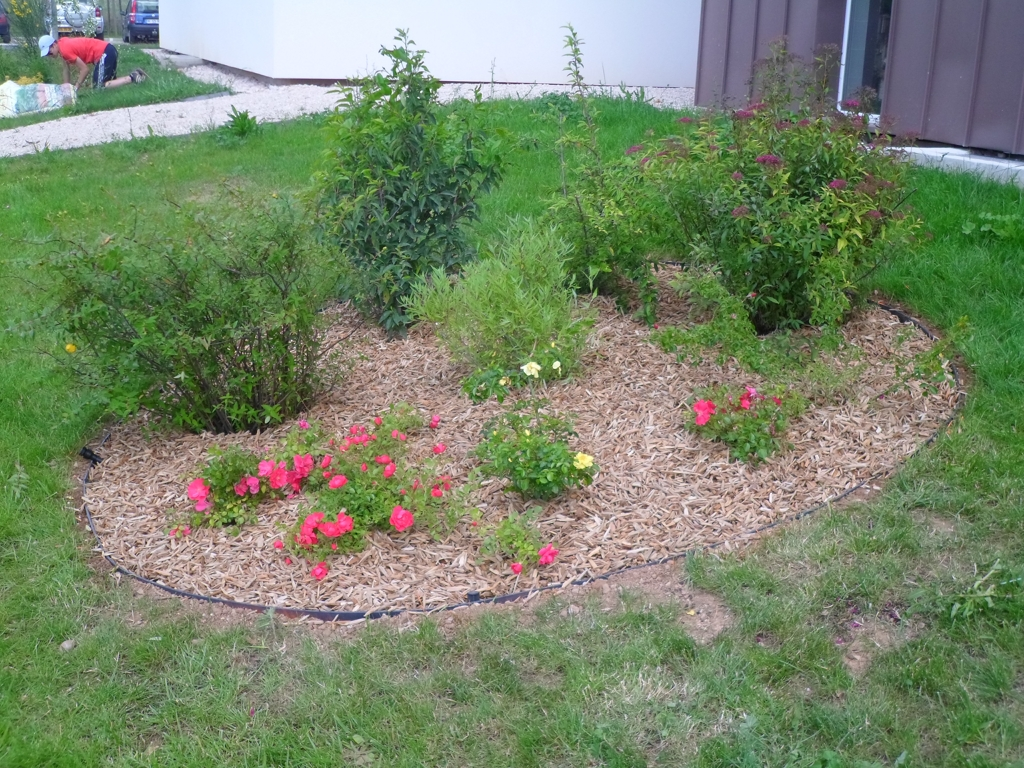 Cr ation de massifs fleuris sur une pelouse dans le var for Creation pelouse