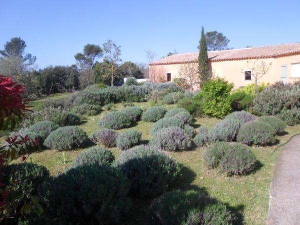 am nagement de jardin avec une terrasse nans les pins ja d e espaces verts. Black Bedroom Furniture Sets. Home Design Ideas